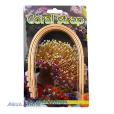 Coral strap (5 pcs.)
