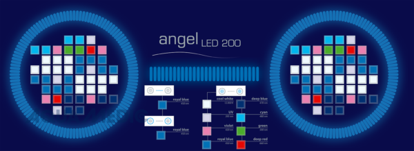 angel LED 200 white