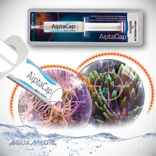 AiptaCap 40ml