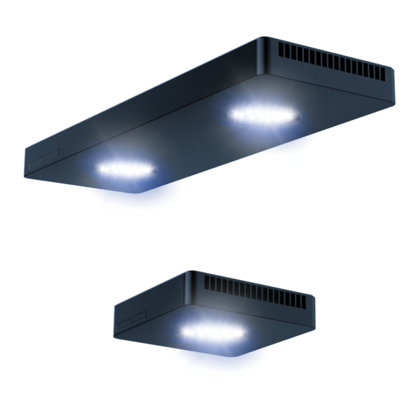 Spectrus Twin LED light with 8 colours and 6 channels